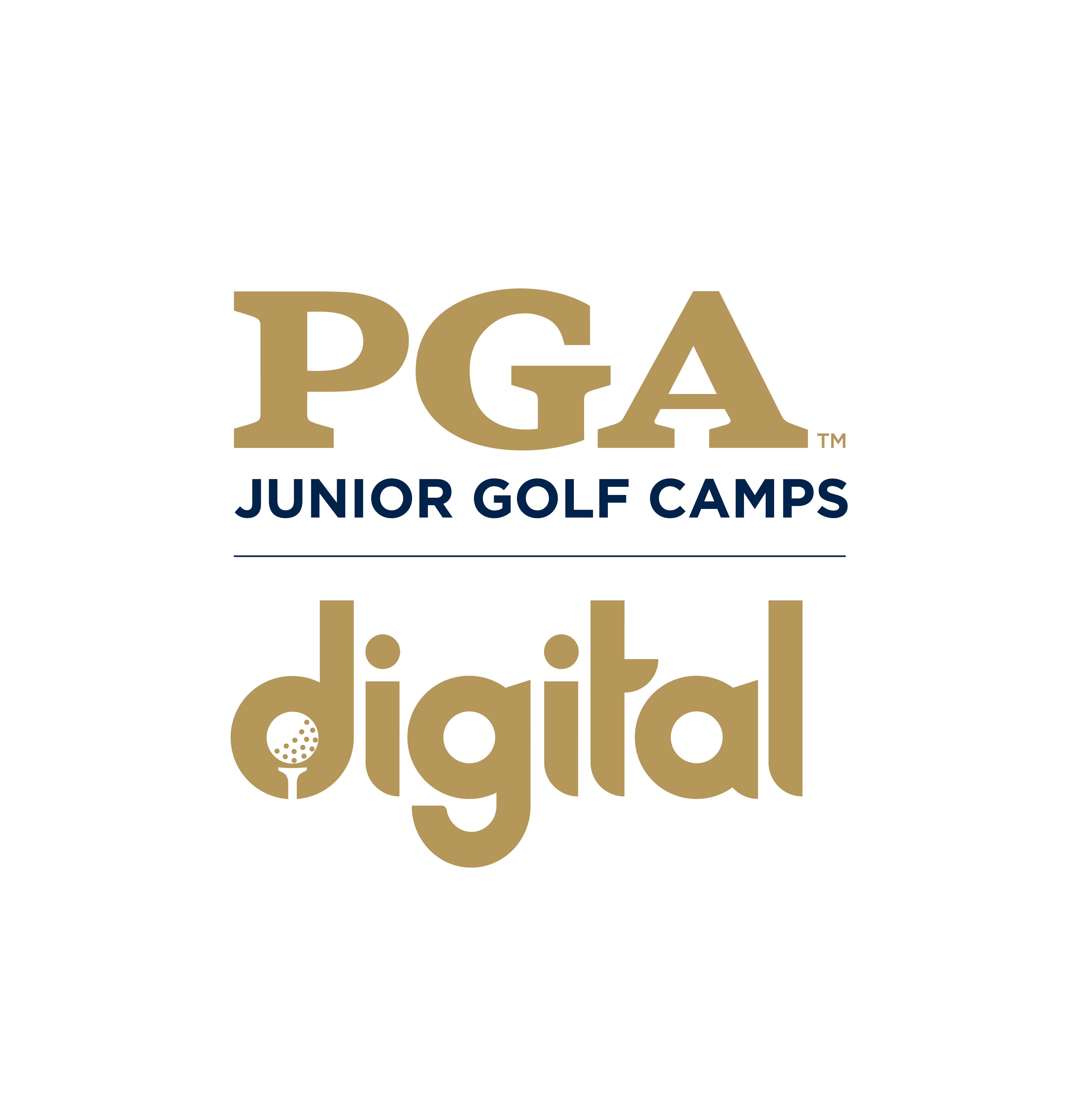 Virtual Golf Camp